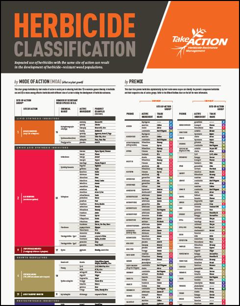 Take Action Chart