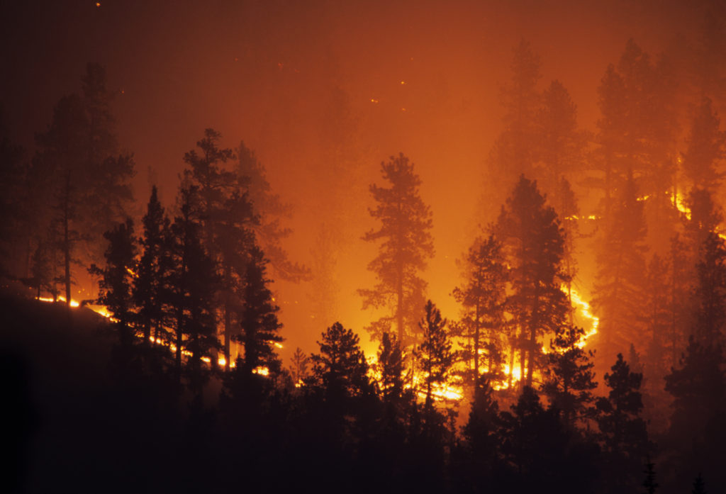 wildfire and climate change