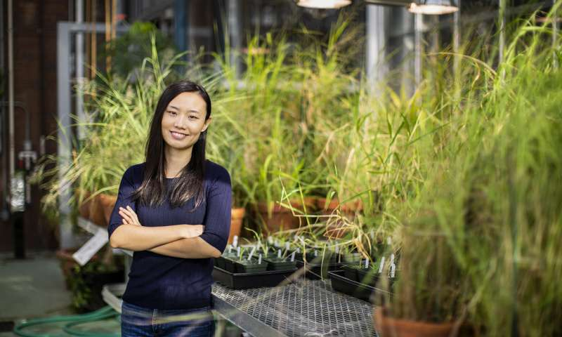 Person standing in front of plants in a science lab