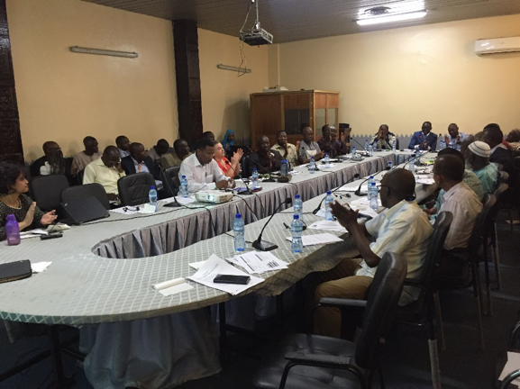Policy workshop in Niamey, April 1, 2019.