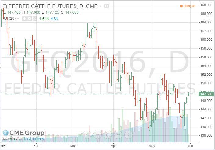 August 2016 Feeder Cattle Futures