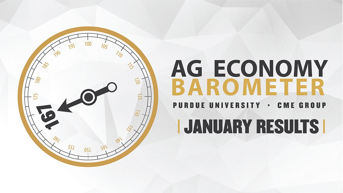 Ag Economy Barometer Widget January 2021: 167