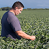 Farmer in soybeans