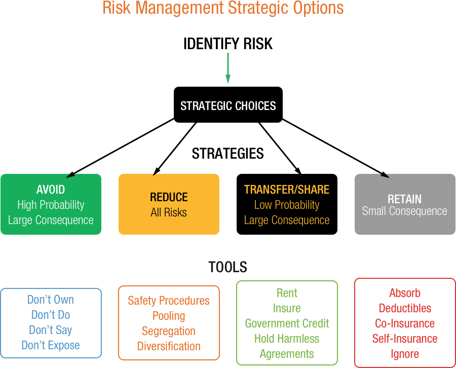 Strategic options for managing risk
