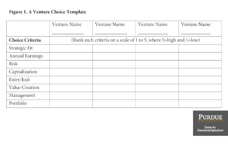 Figure 1. A Venture Choice Template
