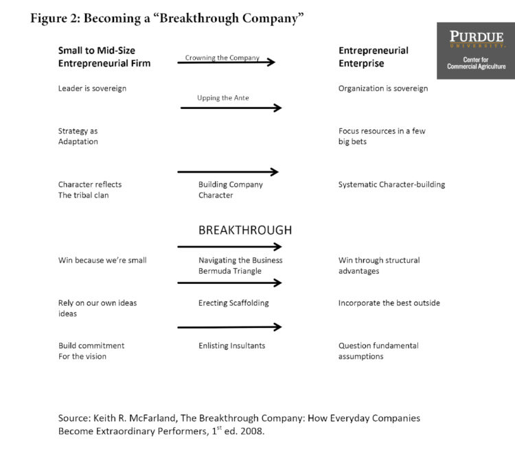 """Figure 2. Becoming a """"Breakthrough Company"""""""