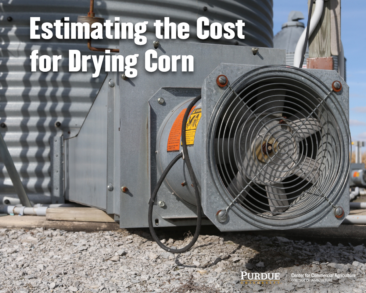 Estimating the Cost for Drying Corn
