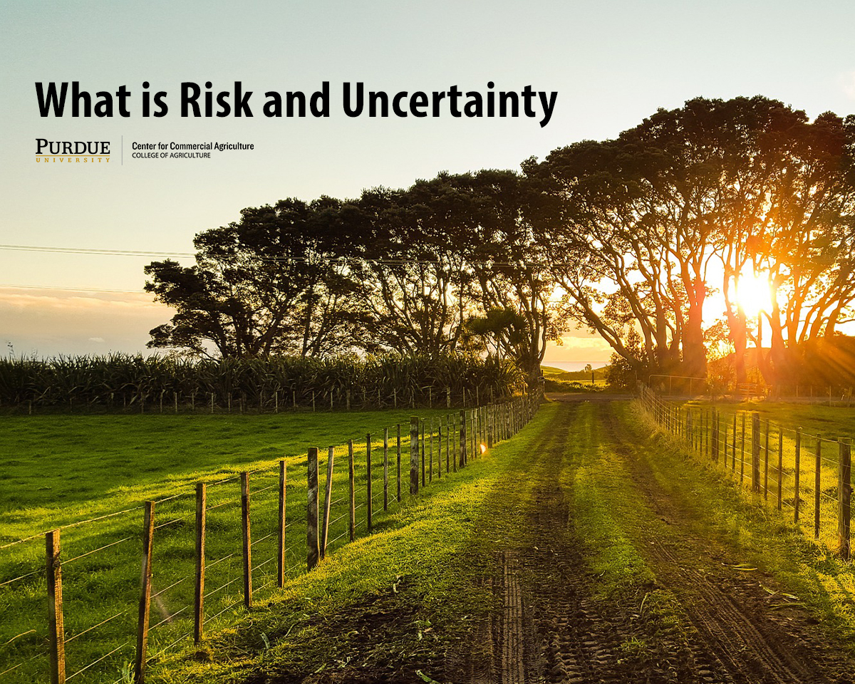 What is Risk and Uncertainty