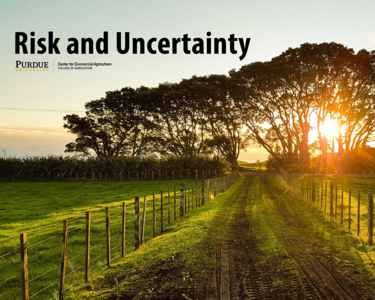 Risk and Uncertainty Series