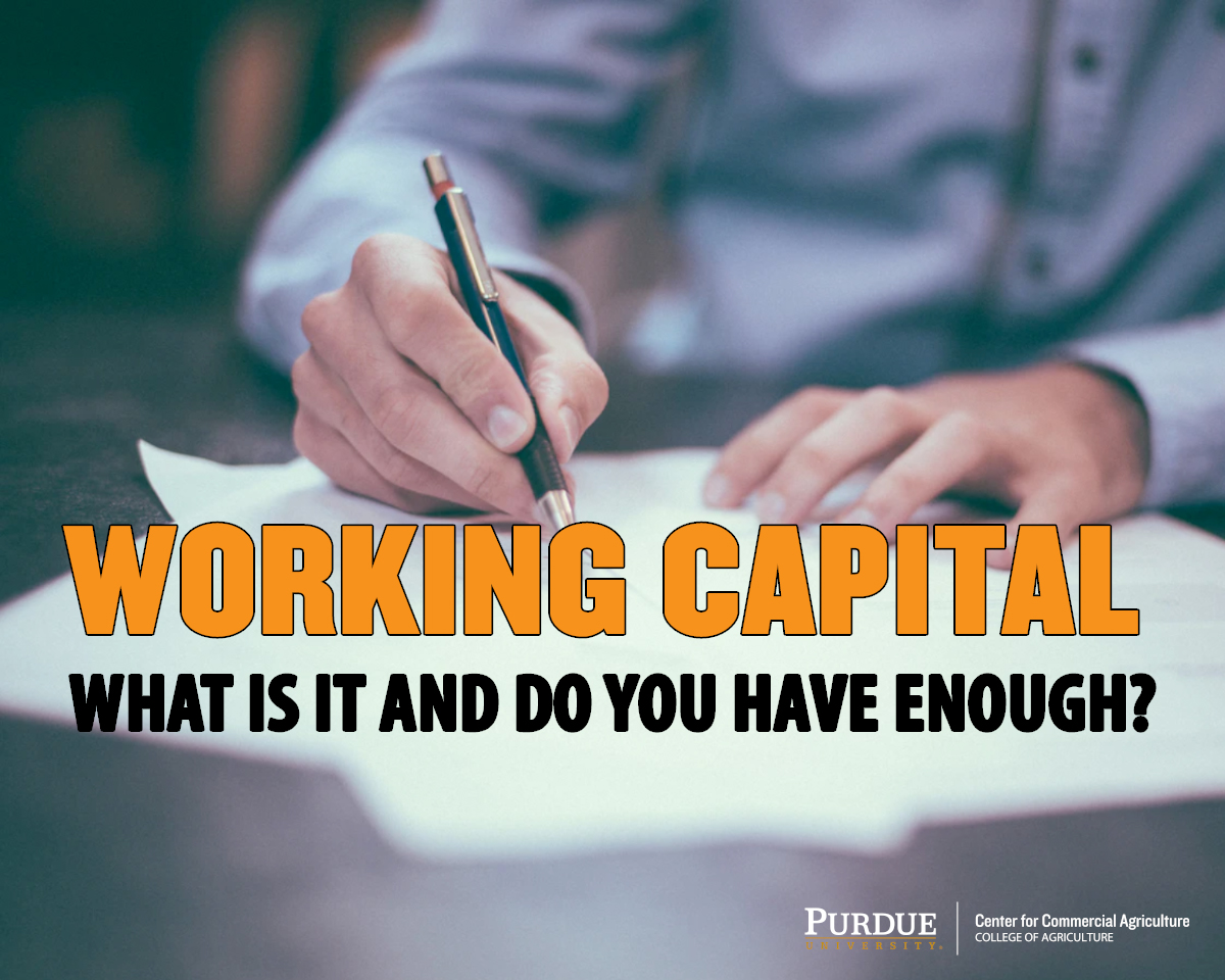 Working Capital: What is it and do you have enough?