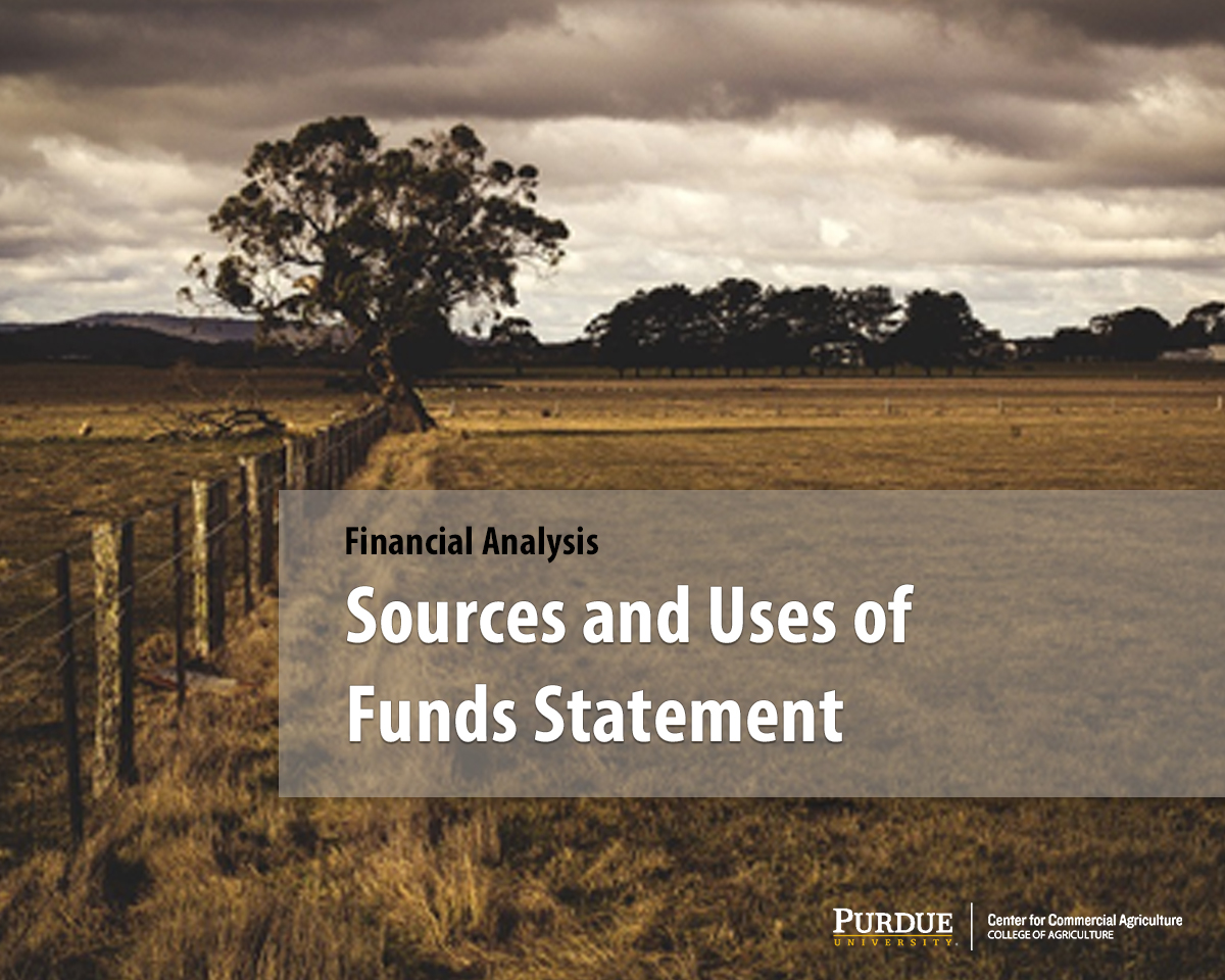 Sources and Uses of Funds Statement
