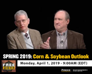 SPRING 2019 CORN & SOYBEAN OUTLOOK