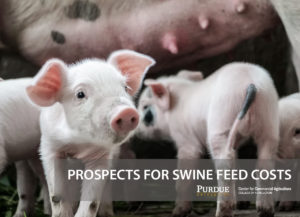 Prospects for Swine Feed Costs