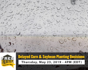 Delayed Corn and Soybean Planting Decisions