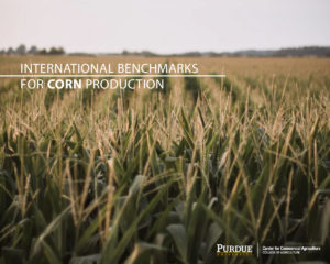 International Benchmarks for Corn Production
