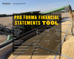 Pro forma Financial Statements Tool