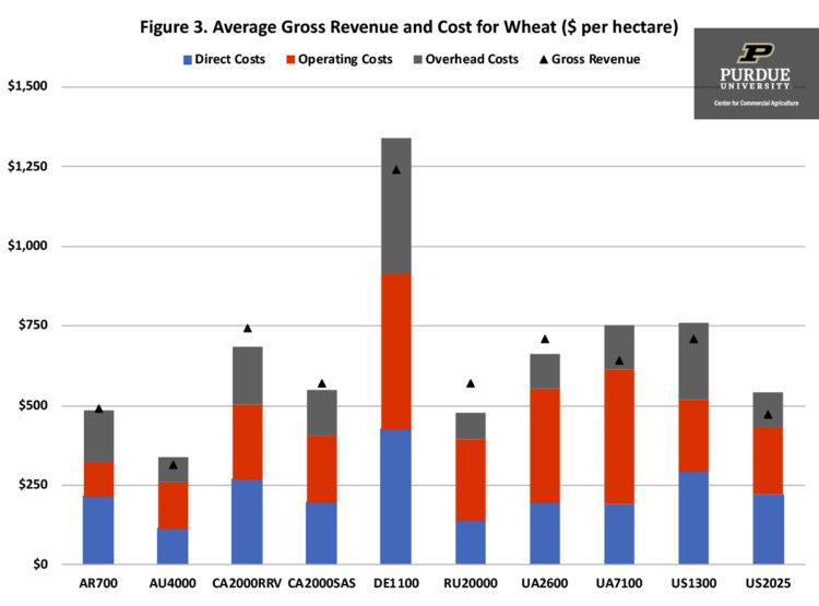 Figure 3. Average Gross Revenue and Cost for Wheat ($ per hectare)