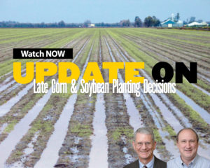Late Corn and Soybean Planting Decisions Webinar