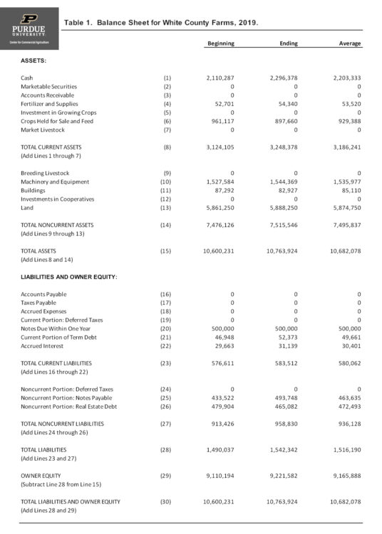 Table 1. Balance Sheet for White County Farms, 2019.
