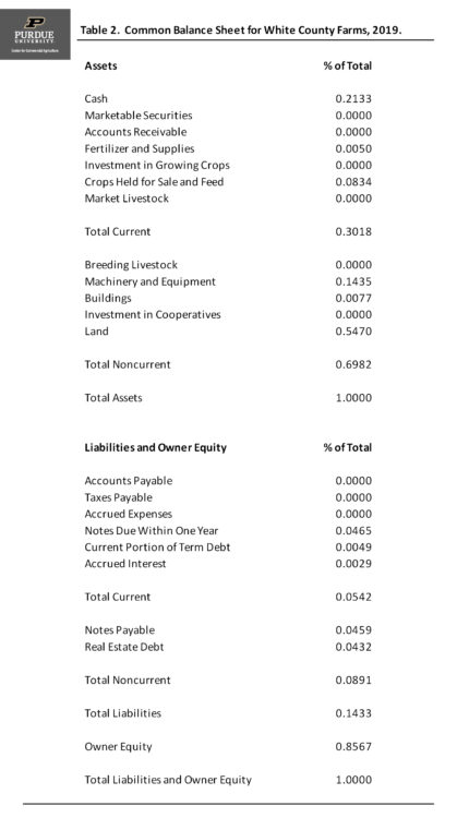 Table 2. Common Balance Sheet for White County Farms, 2019.