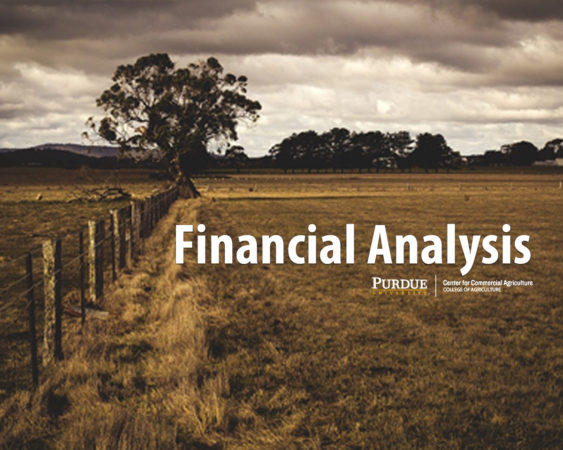 Financial Analysis Series