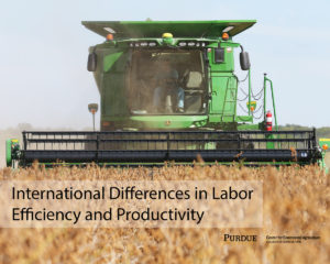 International Differences in Labor Efficiency and Productivity