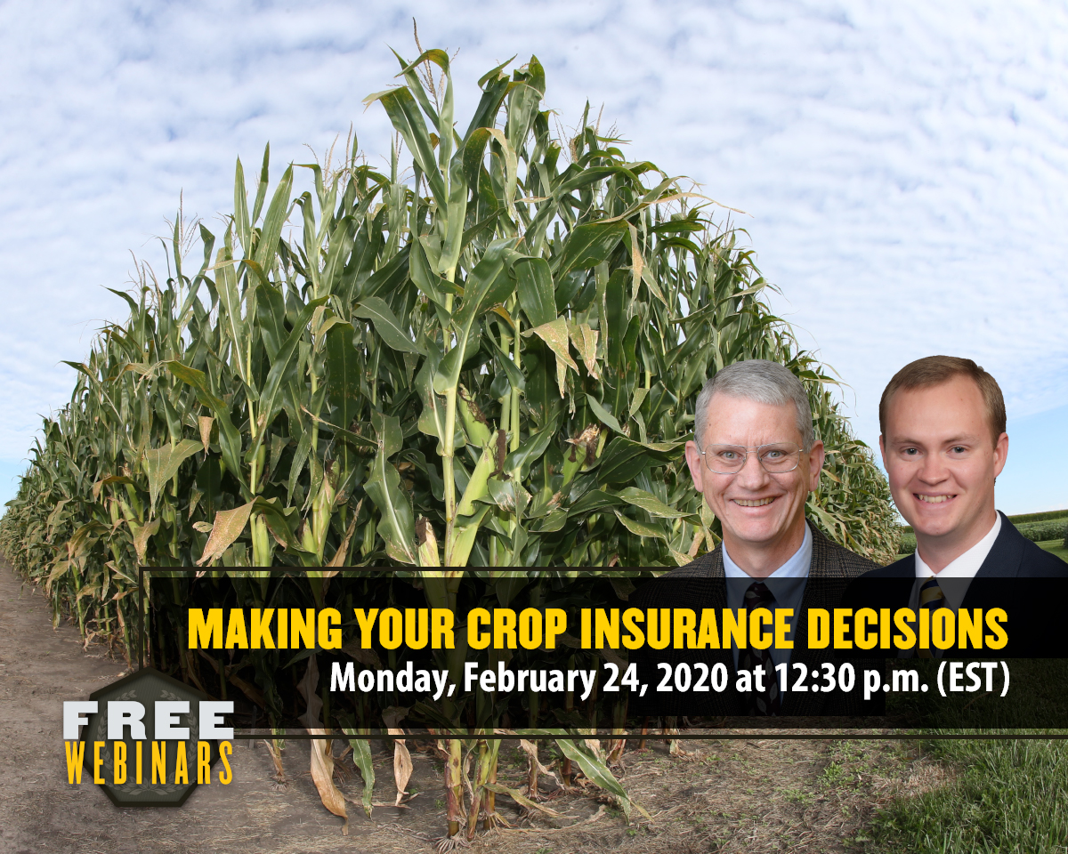 Making Your 2020 Crop Insurance Decisions Webinar