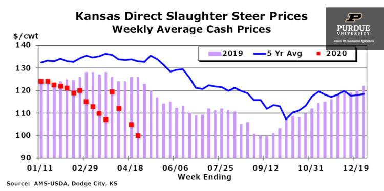 Kansas Direct Slaughter Steer Prices, Weekly Average Cash Prices