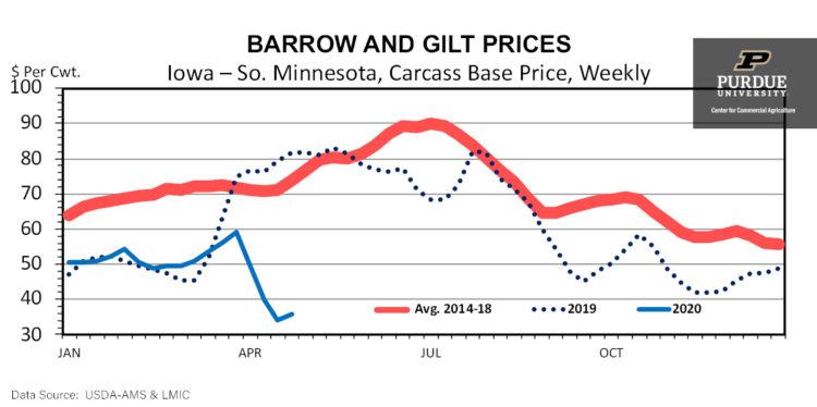 Barrow and Gilt Prices, Iowa - So. Minnesota, Carcass Base Price, Weekly