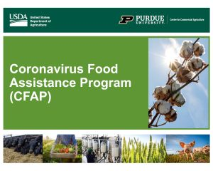 Coronavirus Food Assistance Program (CFAP) Application Details