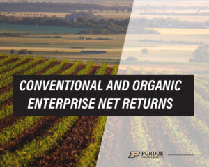 Conventional And Organic Enterprise Net Returns