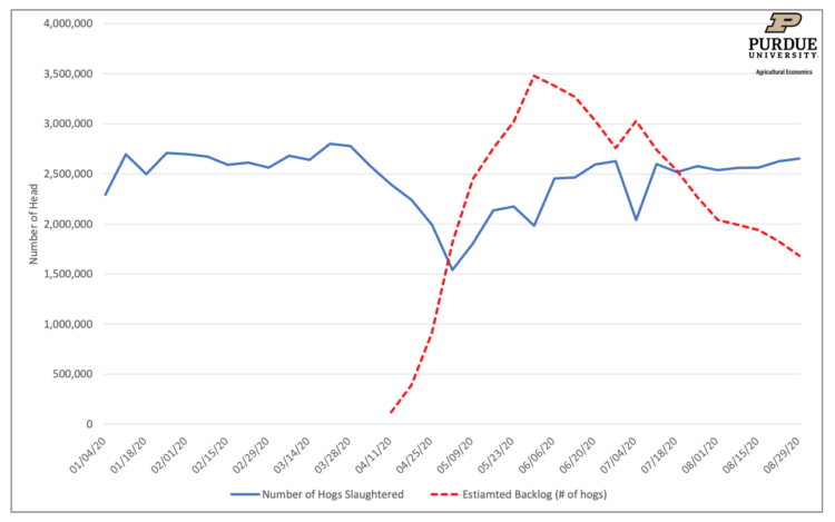 Figure 2. Number of Weekly Hogs Slaughtered Weekly and Estimated Backlog in Market Hogs