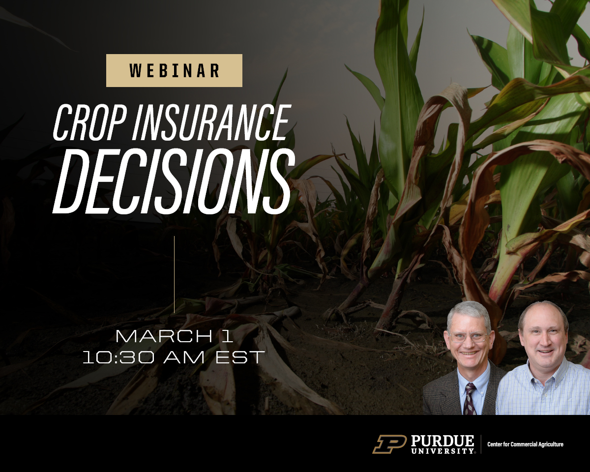 Crop Insurance Decisions webinar, March 1, 2021 at 10:30 a.m. ET