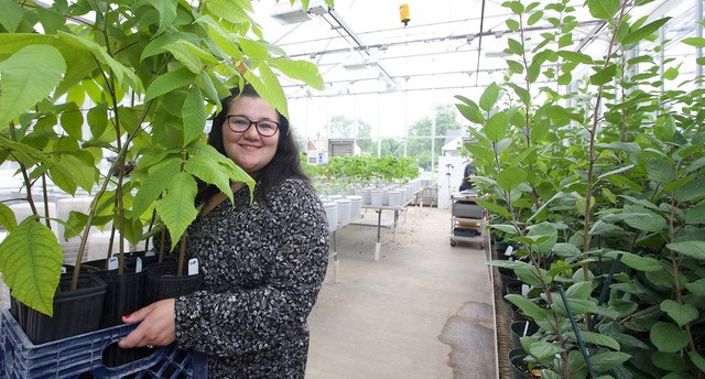 Rachel McCoy holds a tray of plants in a greenhouse
