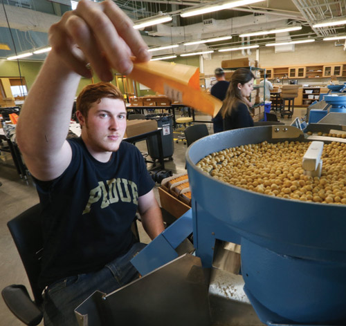 Adam Fisher, pre-veterinary student, sorts and counts seeds prior to planting.