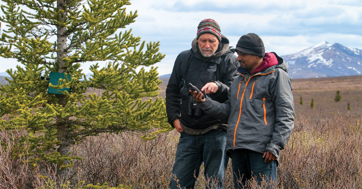 Bryan Pijanowski works with Buddhika Madurapperuma in Denali National Park, Alaska.