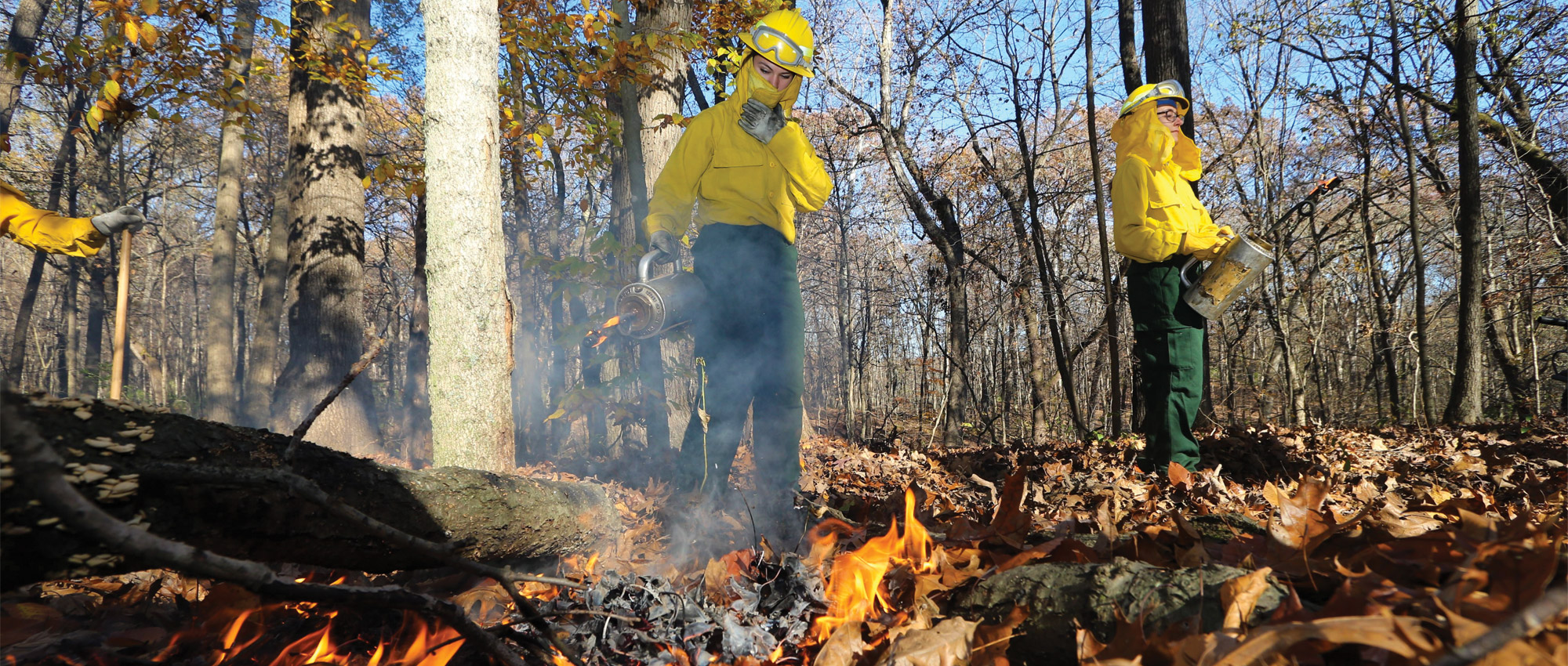 firefighters manage a controlled burn during a training course in Martell Forest