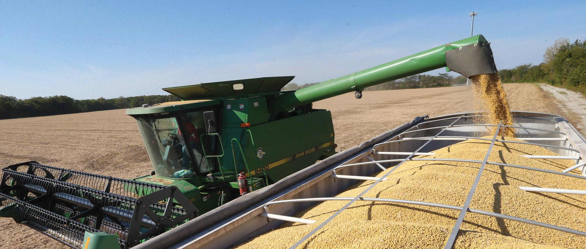 corn harvester in field