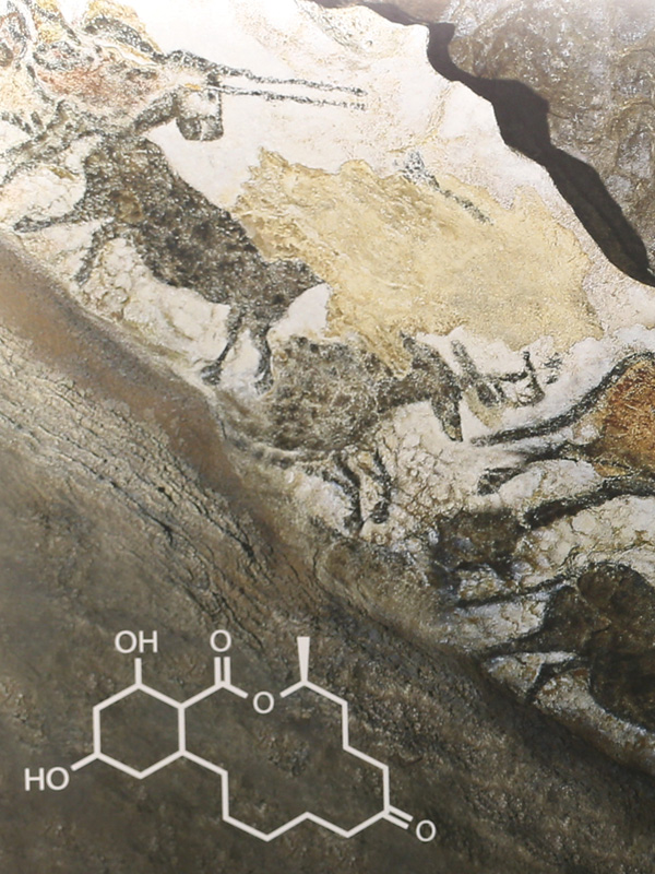 Part of a mural depicting cave paintings and molecular structures