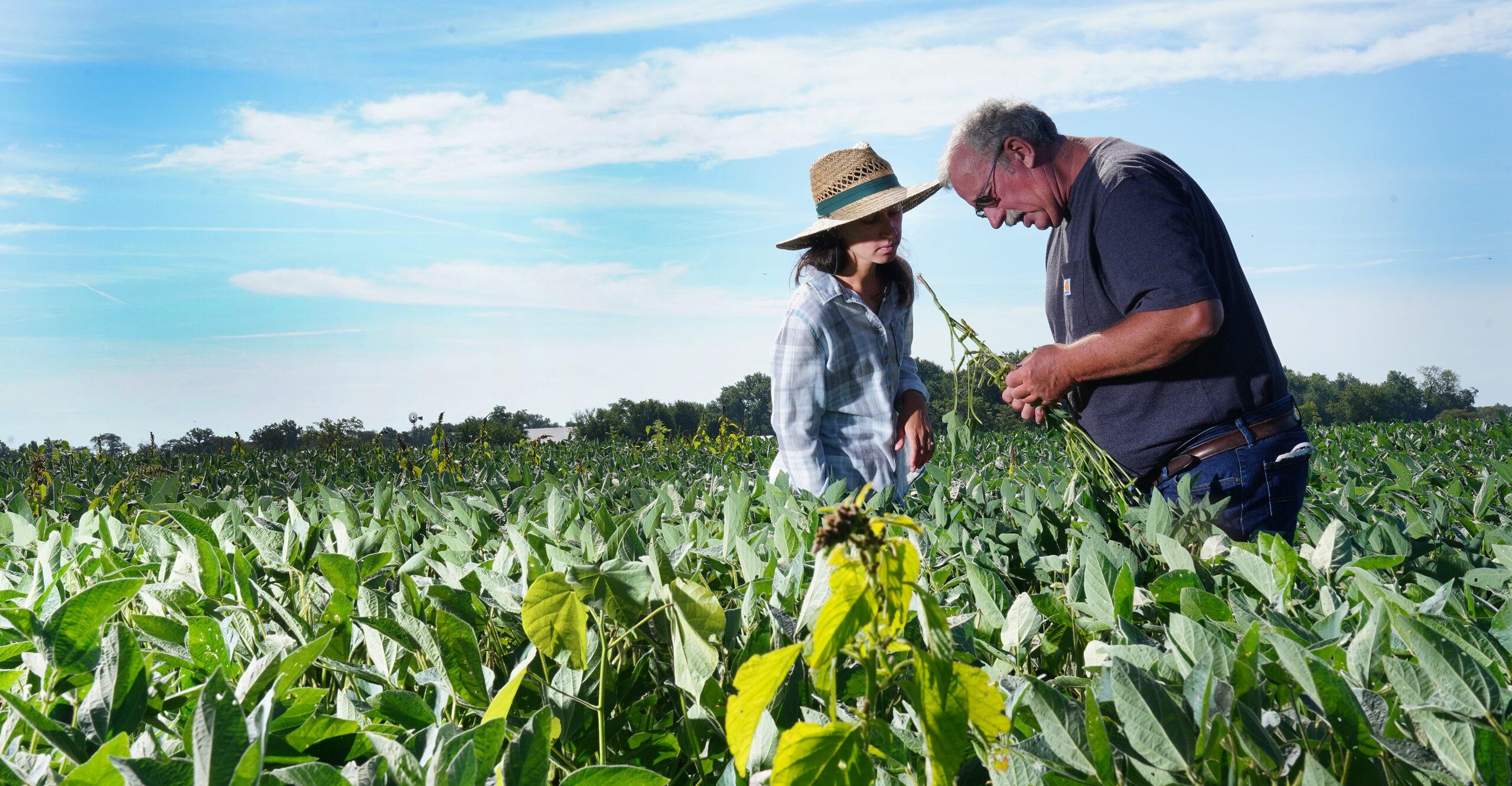 two people in a field