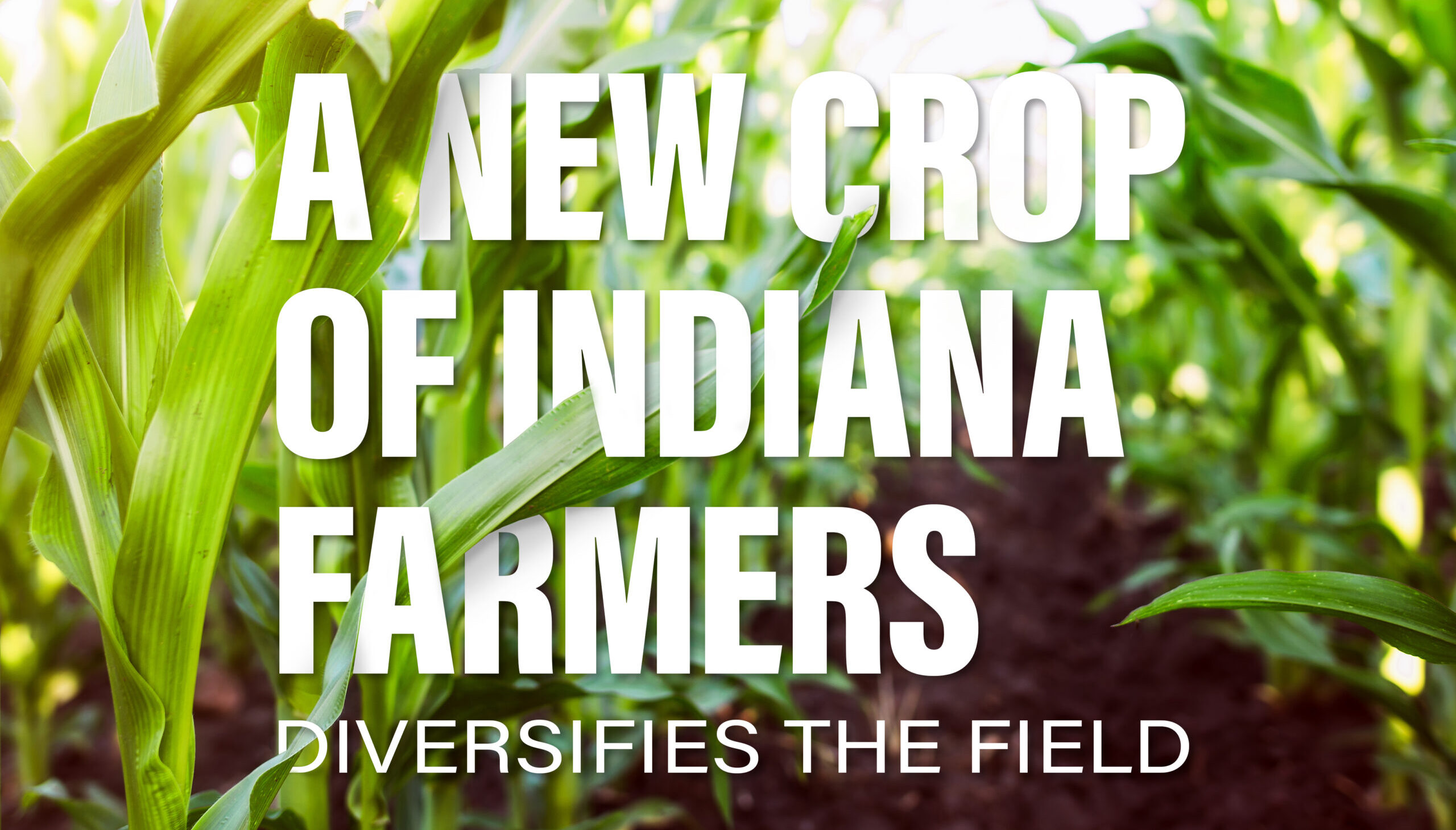 A New Crop of Indiana Farmers Diversifies the Field