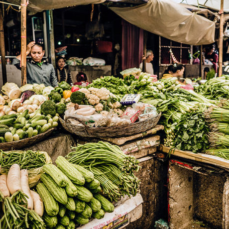 Image for Reducing foodborne pathogen contamination of vegetables in Cambodia: Innovative research, targeted interventions, and impactful, Cambodian-led engagement