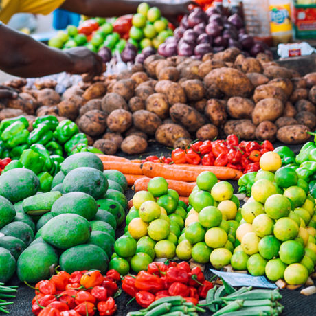 Image for Situational analysis of food safety control systems in East Africa