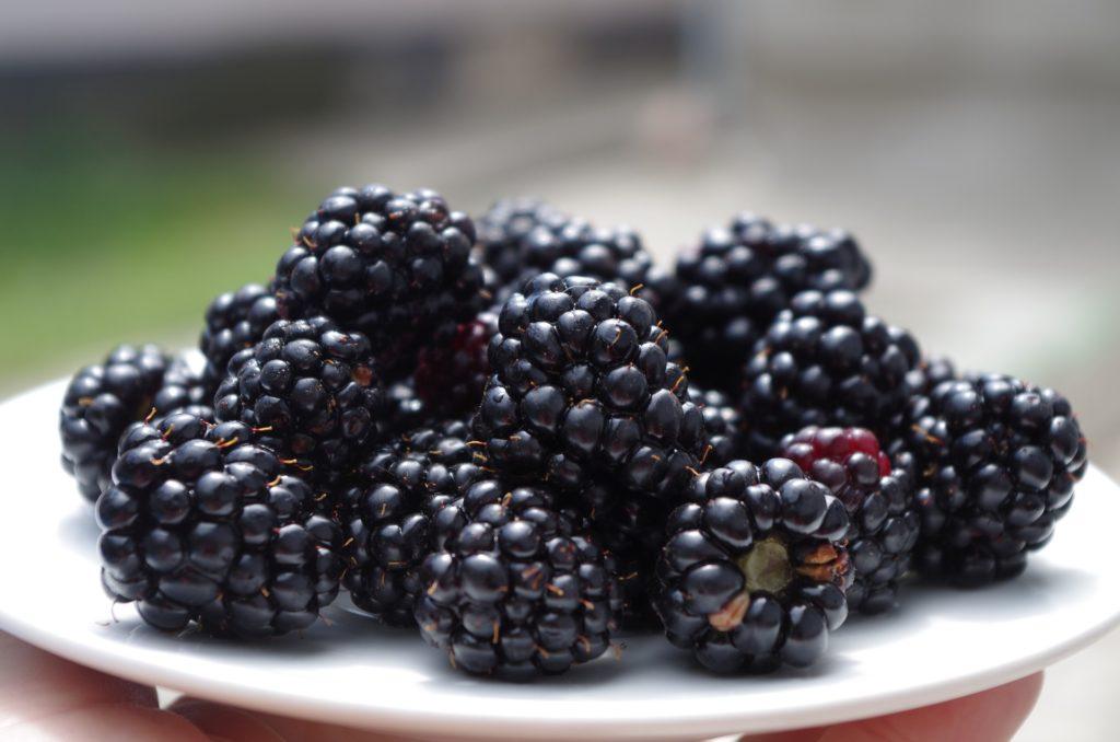 Blackberries on a plate.
