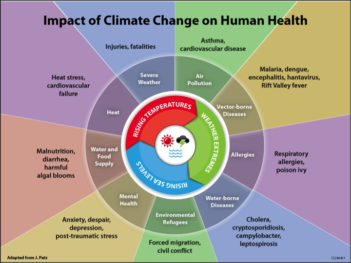 Above: This diagram describes how disruptions in the climate translate to impacts on human health. Source: Monika Dutt, Medical Officer of Health (Cape Breton, Guysborough, Antigonish), adapted from National Center for Environmental Health, Centers for Disease Control and Prevention (CDC).
