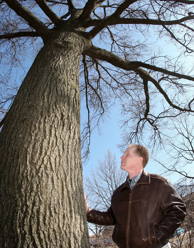 man standing with his hand on a tree