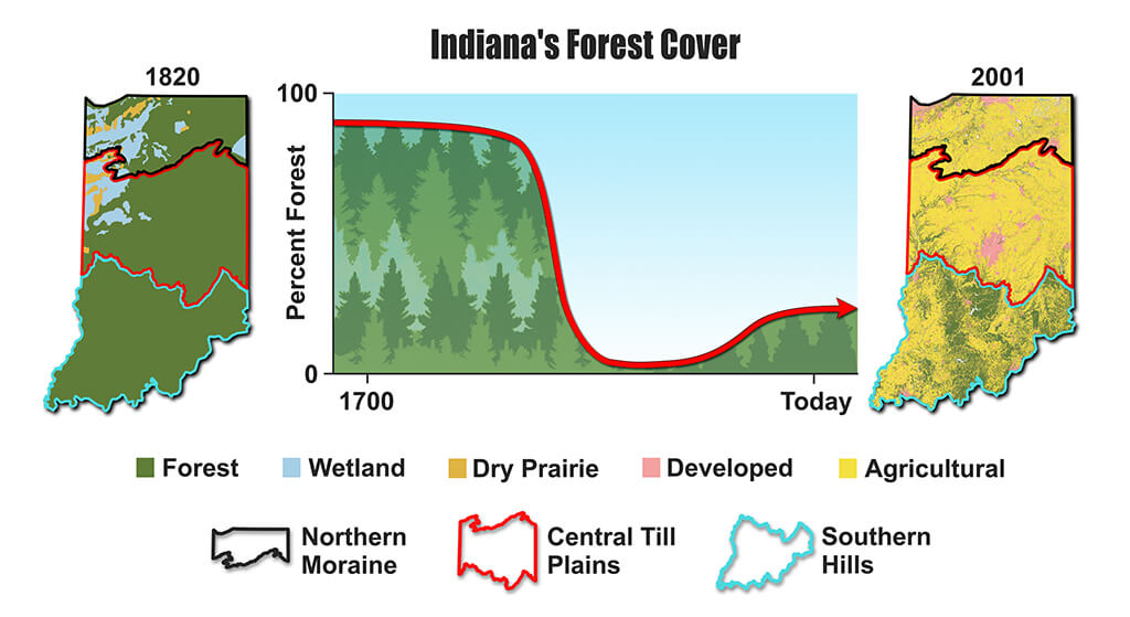 The amount of Indiana covered by forest over time (center), and maps of land cover types in 1820 (left), based on survey records and soil data, and in 2001 (right)