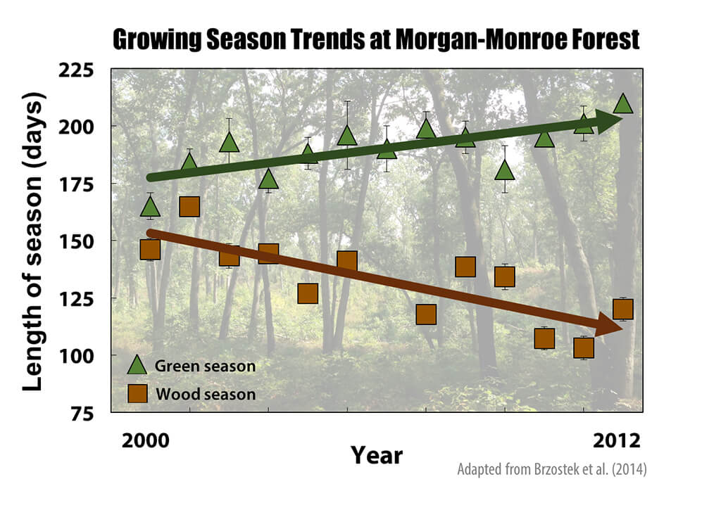 Recent trends in growing season length (as measured by the presence of green leaves) and wood growth period at Morgan-Monroe State Forest in southern Indiana.