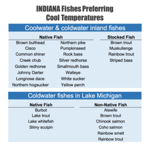 Examples of coolwater and coldwater fish found in Indiana's inland lakes, rivers, and the Indiana waters of Lake Michigan. Research suggests that climate change will reduce habitat suitability for these fish (Mohseni et al. 2003).