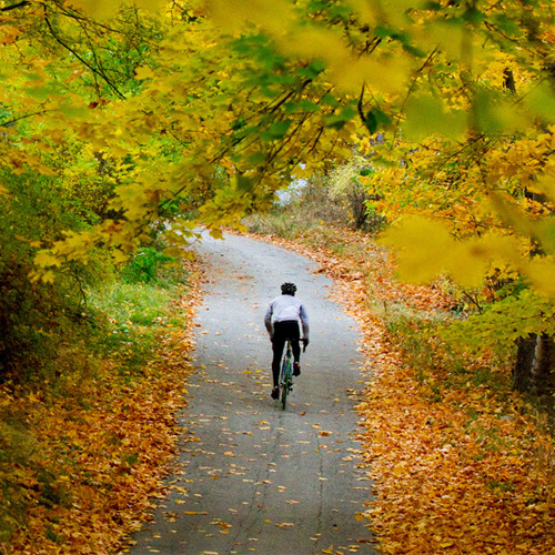 cyclist biking down a trail among fall foliage